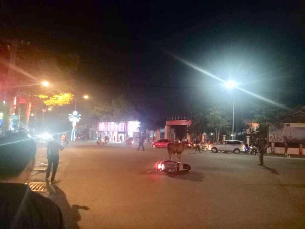 Bò 'điên' húc 6 người bị thương trong đêm ở Bình Dương