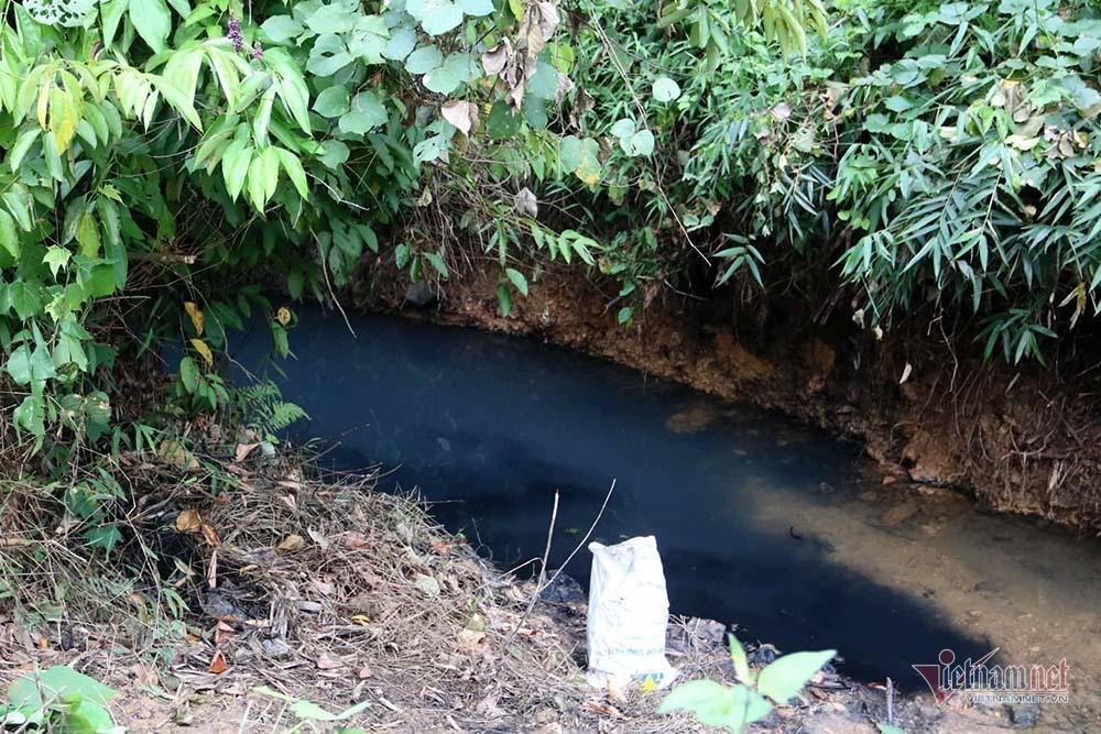 Triệu tập 2 ngườiliên quan đến vụ đổ dầu gây ô nhiễm nước sông Đà