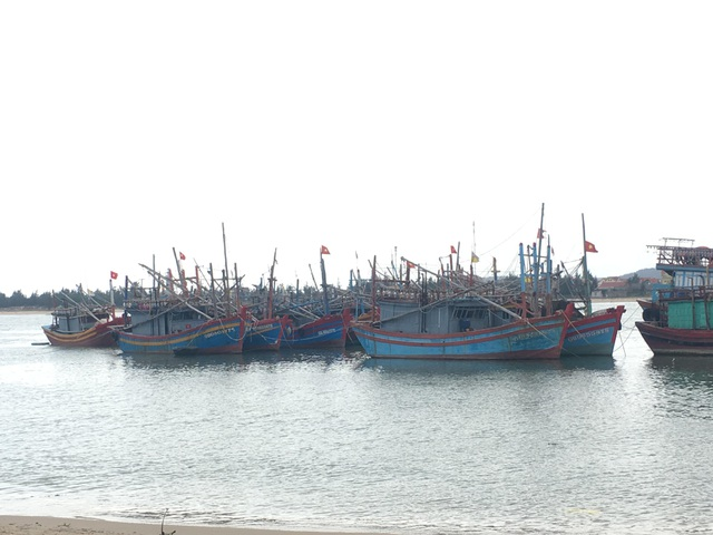 1 người tử vong, 7 người nhập viện cấp cứu sau khi ăn ốc biển