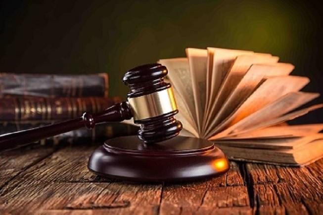Viện đề nghị hủy án sơ thẩm và phúc thẩm vì xử nhẹ