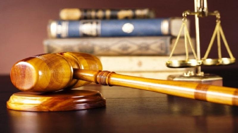 24 bản án áp dụng Án lệ 08/2016/AL về tranh chấp hợp đồng tín dụng trong lĩnh vực kinh doanh, thương mại