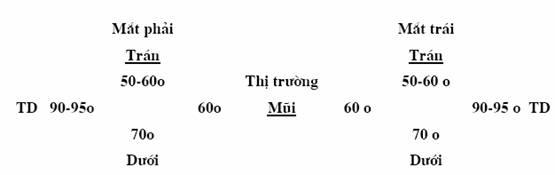 Văn bản hợp nhất 06/VBHN-BYT năm 2014 hợp nhất quyết định về bản